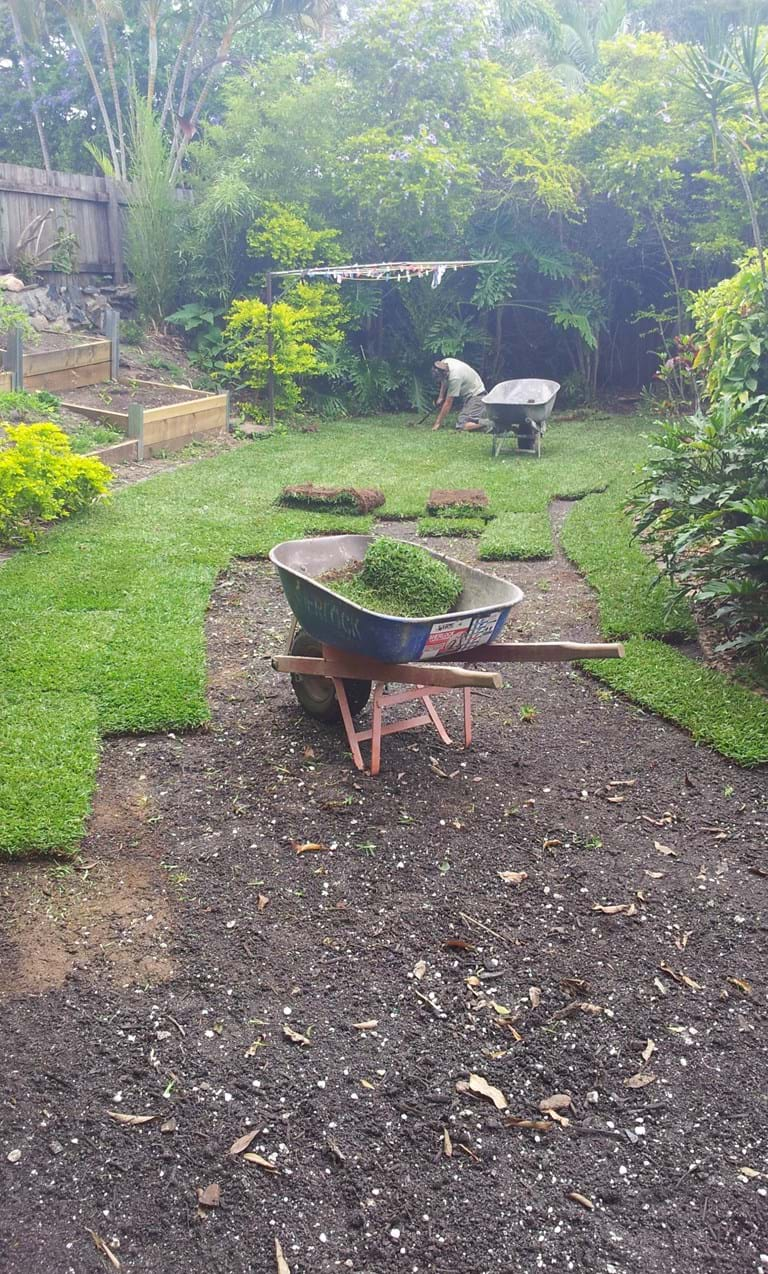 Turf Landscape Renovations