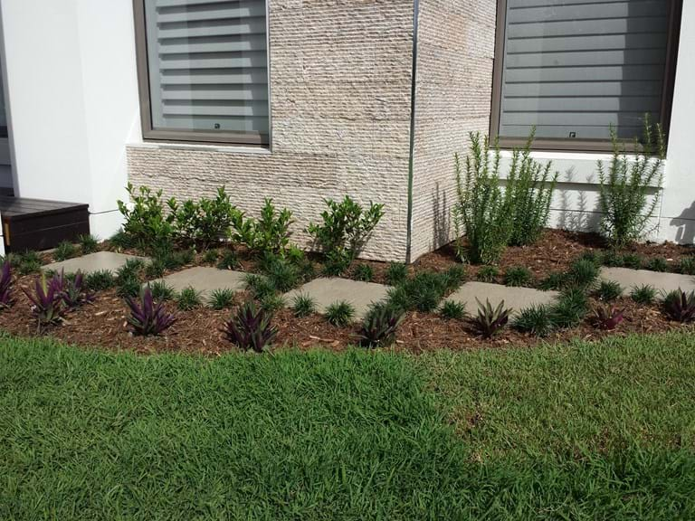 Planting Landscape Renovations
